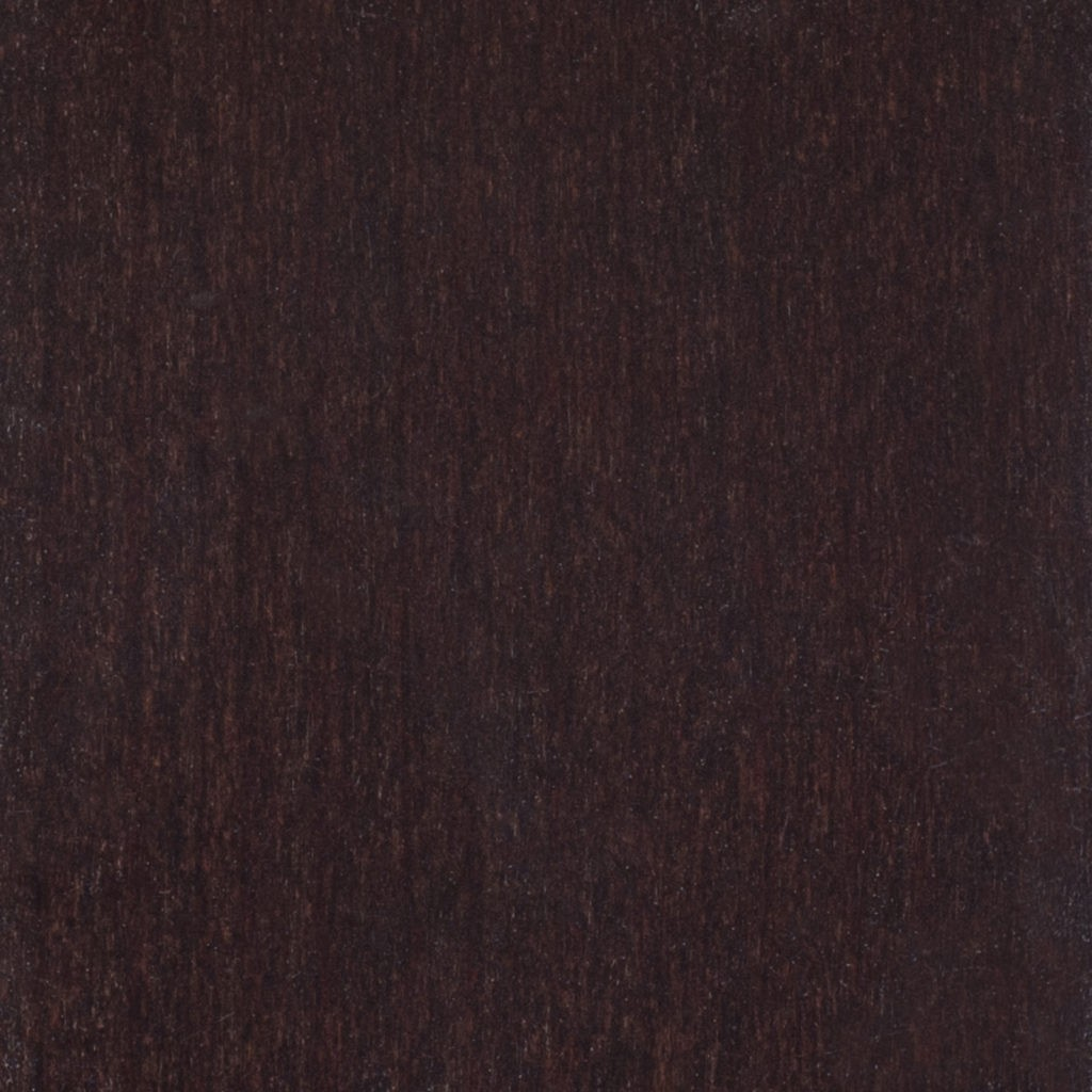 186 Chocolate beech buk czekoladowy